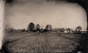 Hanging Tree site, Tintype